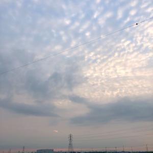 うろこ雲と薄日差す鉄塔群 ・ 8月4日火曜日