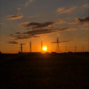 夕日を浴びる鉄塔群
