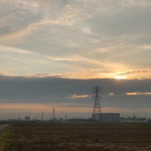 雨上がりの朝的な鉄塔群