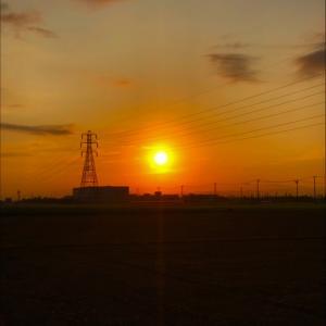 真っ赤に燃えた朝日と鉄塔