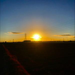 久々に現れた朝日と鉄塔群