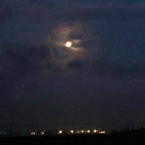 雨上がりの雲間に見た月