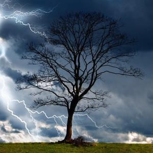 防草シート張りは風予報を確認してから行こう