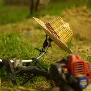 夏場の虫対策に防虫サファリハットがおすすめ