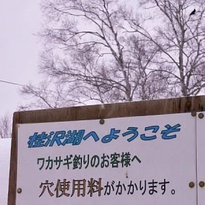 2020ワカサギは桂沢湖で開幕
