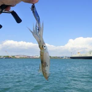 釣行記事のつくり方
