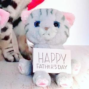 1日遅れの、簡単、父の日 猫動画❣️