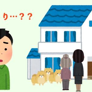 これが現実?迷い犬の飼い主の家…着くとそこにはそっくりなワンコが9匹も…。