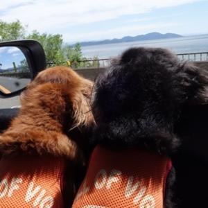 迷ったときは琵琶湖がいいっ!