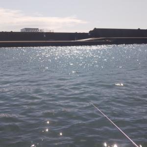 平塚新港 中央桟橋