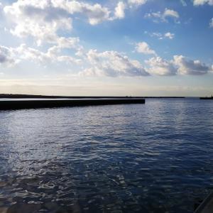 相模川河口 2日連続釣行