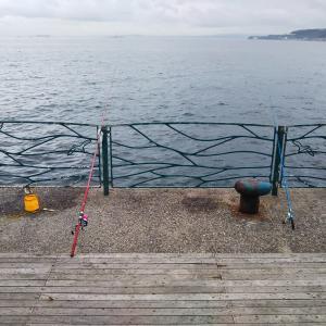 海辺つり公園 カゴ釣り + α