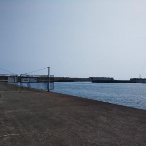 平塚新港 黒鯛狙いで撃沈!
