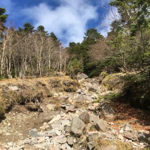 蓼科山登山口からピストン(2)蓼科山日帰り登山