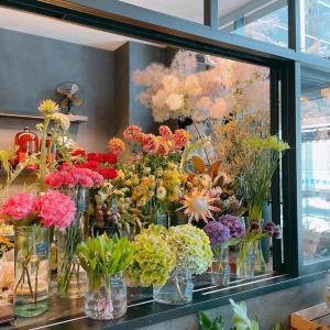 お花に囲まれて癒されるフラワーカフェに行ってきました