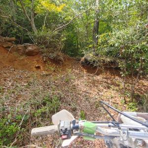 新たな林道を求めて探索。
