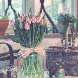 心がほっこり温まるような雰囲気を作る「かご」◇初心者の方も安心の「カゴ作りワークショップ」