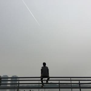 なぜ孤独は人の心身をむしばむのか?◇オンライン・ミニカウンセリン