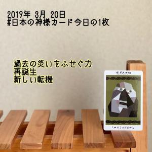 日本の神様カード今日の1枚/道反之大神(ちがえしのおおかみ)