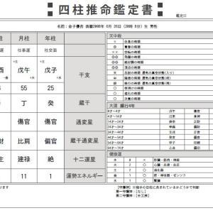 【四柱推命】適職