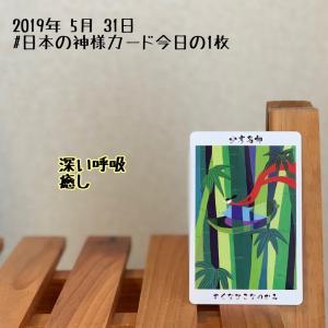 日本の神様カード/少彦名神と骨盤