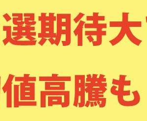 【IPO上場】ロコガイド(4497)当選&利益に期待大か!