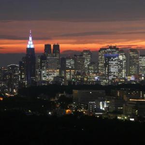 東京都 感染者400人超の見込み