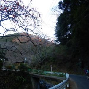 テーマのある山歩き⑥富士見の道