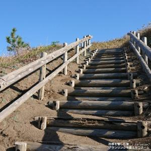 秋の散歩道「小春日和」 空と海を結ぶ階段