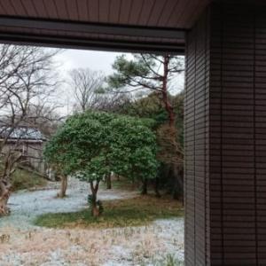 冬のリンクテラス「立春に降りはじめた雪」