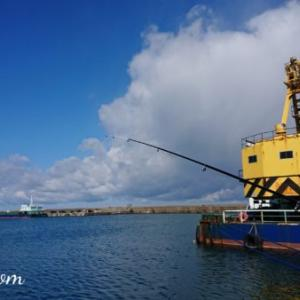 海釣りデビュー戦の朝に雪がちらついたら・・・