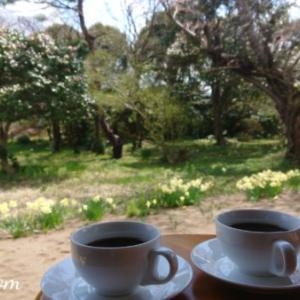 春のカフェテラス「二分咲き桜と釣りトーク」