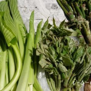 山菜ラッシュ「うるい&うど」ふるさとから春の味覚が届きました