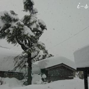 積雪125センチ。耐雪150cmのカーポートで助かった