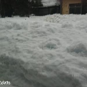 大雪によるハローワーク失業認定日の変更