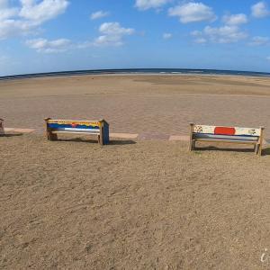 【動画】海沿い散歩「ウインドサーフィン」