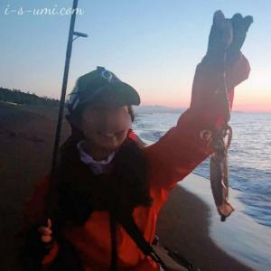 釣行 | ついに来たよ!アオリイカ主婦のエギング初釣果