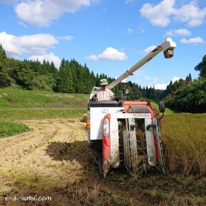 魚沼産コシヒカリ稲刈り「82歳父の米づくり」YouTube