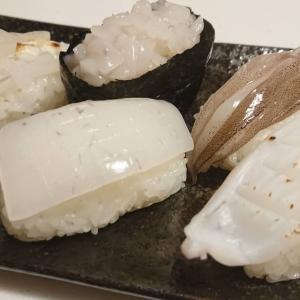 自宅で寿司を握る!釣ったアオリイカでイカ三昧にぎり寿司