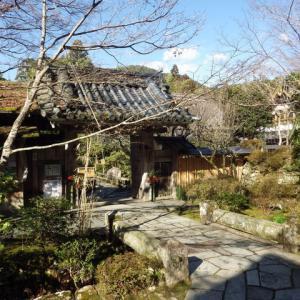 【RW2:京丹阪14】大原・宝泉院の魅力