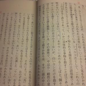 抽象化の違いが日韓両語での違いを作る -『入試現代文へのアクセス・基本編』より-
