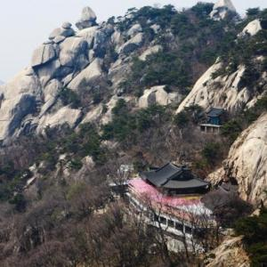日本の製鉄は朝鮮半島での激しい自然破壊がきっかけだった -「開発講座」より-