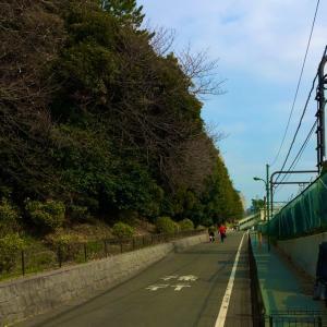 『ドラゴン堀江』ホリエモン・TAWASHI氏の二次試験結果を見て