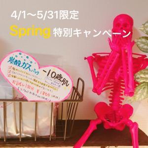 4/1〜5/31限定Spring特別企画♡