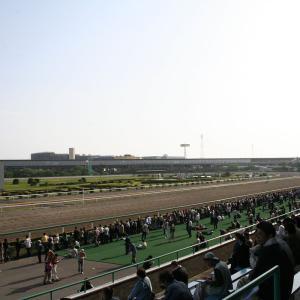 大阪杯に資金を繋げ!4月3日船橋競馬11R若潮スプリントの馬券予想
