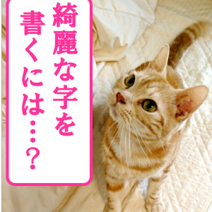 俳句の書き方★きれいな行書をかく練習★手本・解説付⑨