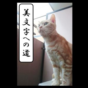 松尾芭蕉の俳句の書き方★きれいな字を書く練習⑬