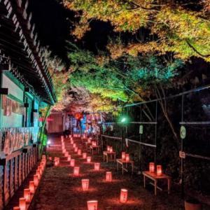 バタバタだから最近行った「炭坑節まつり」「伊田駅の鉄板焼き」「三井寺のライトアップ」を一気に報告すっぞ!