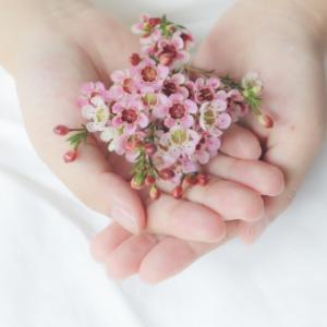 愛や優しさに溢れ、想いがまとまる日