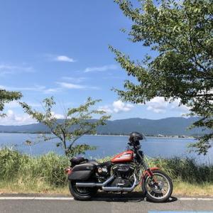 ハーレーで行くメタセコイア、奥琵琶湖で定点観測